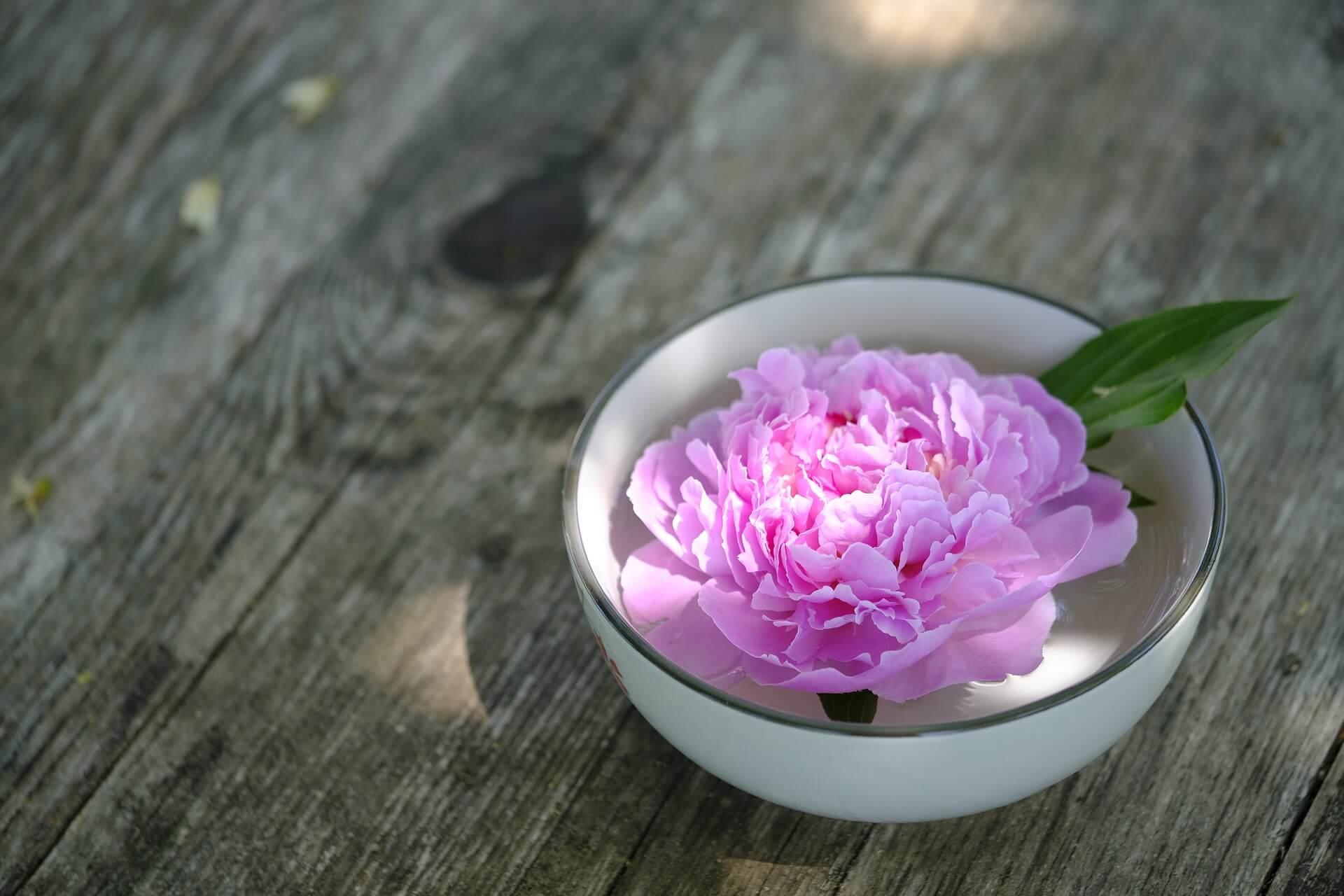 TuiNa Massage Therapie Arnhem | Klachten